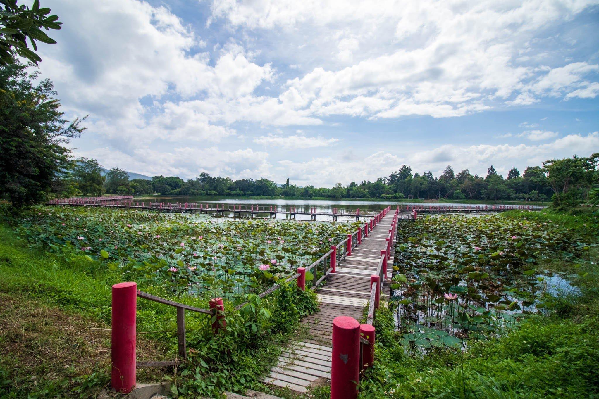 Nong Bua Natural Lakes Area - Choeng Doi, Doi Saket