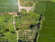 (LS236-01) Beautiful plot of land near Doi Saket Center.